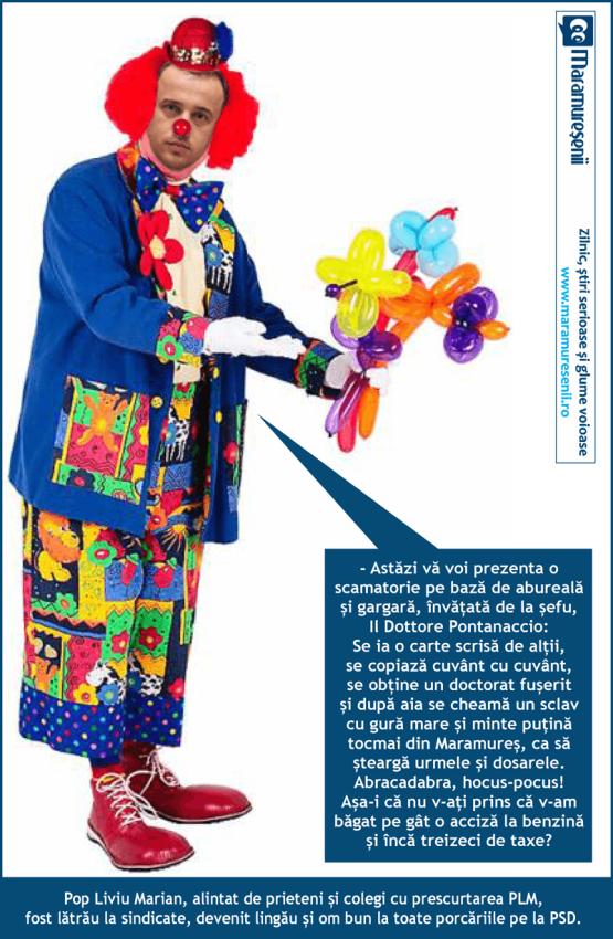 06 liviu pop clown