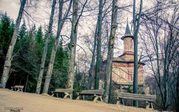 Casa Maicii Domnului din Dealul Viei