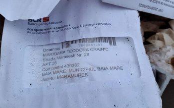 Pe strada Mărășești unele entități bipede aruncă gunoiul în spațiul verde