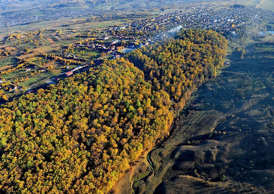 Rezervația Pădurea Crăiască – Ocna Șugatag