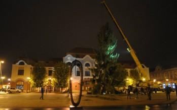 Minune edilitară: Bradul din Centrul Vechi a crescut peste noapte cu 3 metri!
