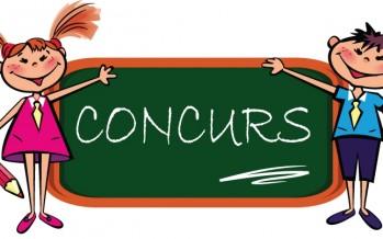 Concurs: Visul tău pentru Maramureșul anului 2020
