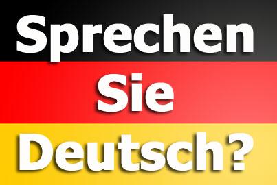 Sprechen Sie Deutsch, Herr Cherecheș?