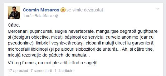 mesaros facebook